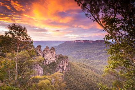 Sydney Private Day Tours, Luxury Private tours to the Blue Mountains, Best Day Trips from Sydney, Blue Mountains Tours